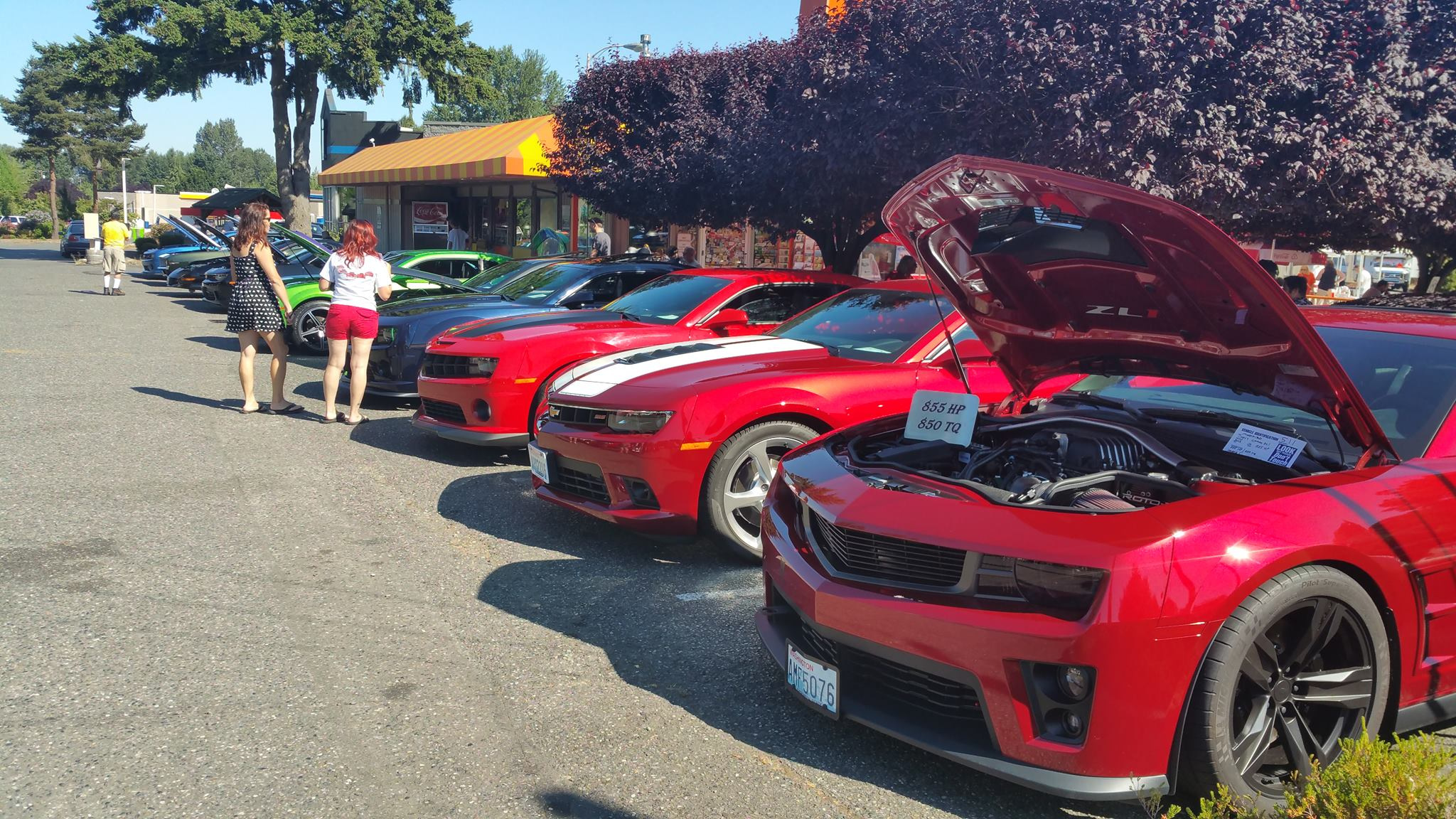 2015 All Camaro Show Pictures